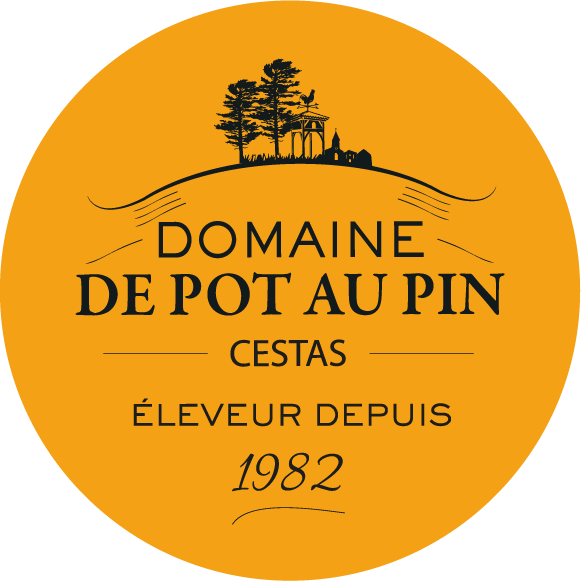 Logotype Domaine de Pot au Pin